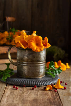 Mushrooms chanterelles in an iron retro bowl and forest moss on a wooden old background. Mock up. Top view