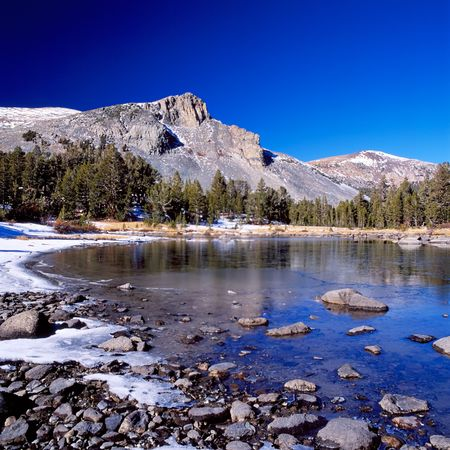 midday: Yosemite national park at midday Stock Photo