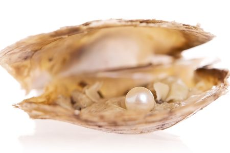 Pearl inside an oyster shell Stock Photo