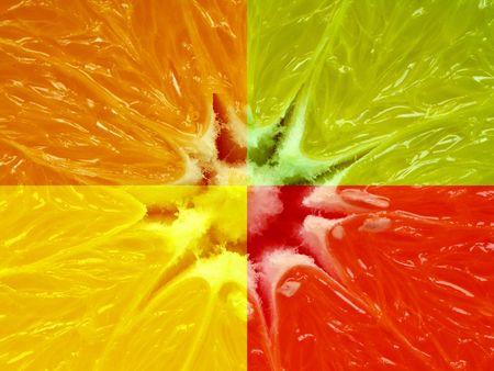 Composition of four different citrus fruit.