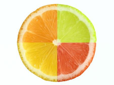 Composition of four different citrus fruit. Clipping path. Stock Photo