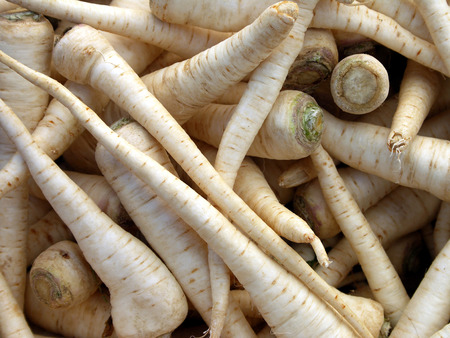 A close up of parsnips, washed and cleaned.