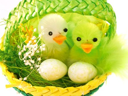 Two ducks in the Easter basket. photo