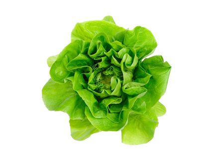 edible leaves: Green lettuce isolated on the white background.
