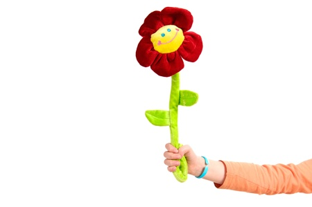 Girl with the funny flower isolated on the white background  photo