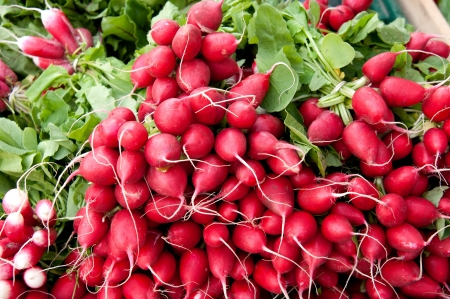 Pile of red radish for display at market