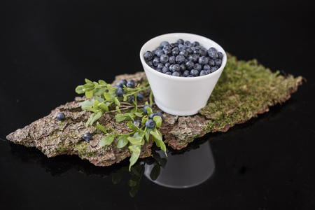 Blueberry in white bowl on bark with moss, stay in the mirror in horizontal