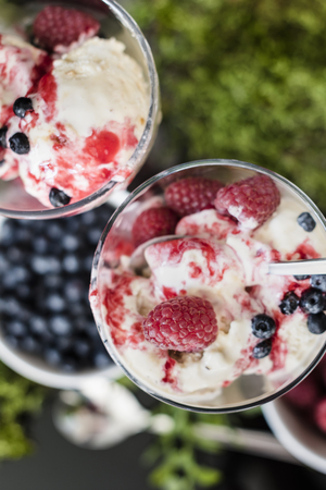 chillout: Ice cream with fruits raspberries, blueberries and with raspberries syrup, stay in glass on moss, one spoon is inside glass and one is outside in background