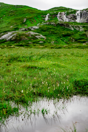 Meadow and a little river with the waterfall view in Jotunheimen National Park of Norway