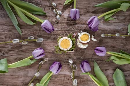 Wytnij jajko w sk?adzie ko?a z purpurowymi tulipanami i wierzbami wierzby. Widok z g�ry.
