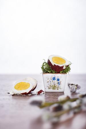 Wytnij jajko w czerwonej muszli z ga??zek wierzby. Weso?ych ?wi?t Wielkanocnych. Zdjęcie Seryjne