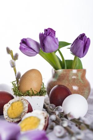 Pisanki w sk?adzie z tulipan�w i ga??zek wierzby. Weso?ych ?wi?t Wielkanocnych. Zdjęcie Seryjne