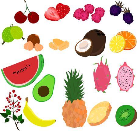 Set of fruits, berries, nuts. Summer design.