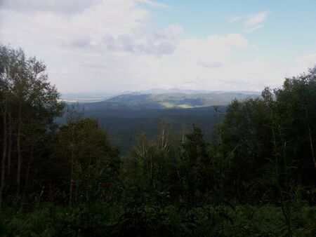 Dense forest. The hills in the distance. Evening landscape. 版權商用圖片
