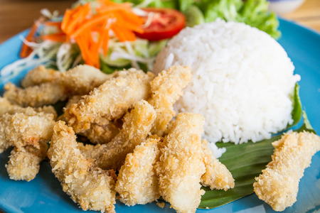Deep fried pork with plain rice and vegetable salad photo
