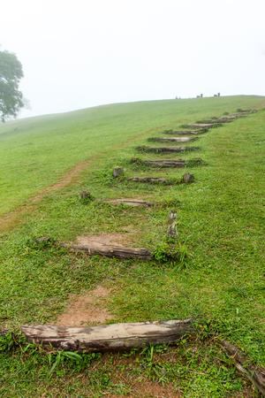 haze: pathway in upper mountain with foggy haze mist