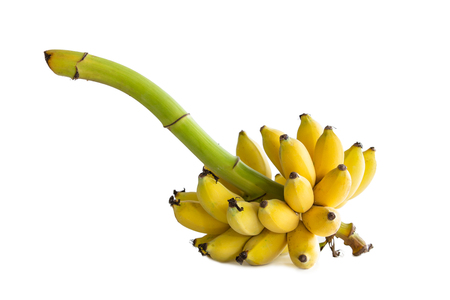 Cultivated banana isolated on white background,Clipping path 免版税图像