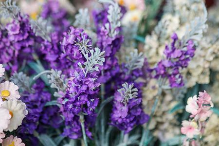 Purple flowers background.