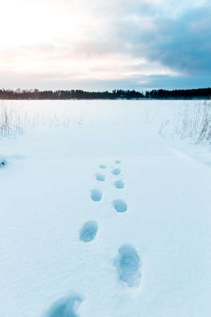footsteps: Footsteps in the snow leading to a lake