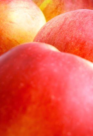 Apples, close-up, shallow DOF photo