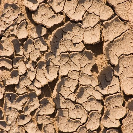 parch: Cracked ground after a drought, macro closeup Stock Photo