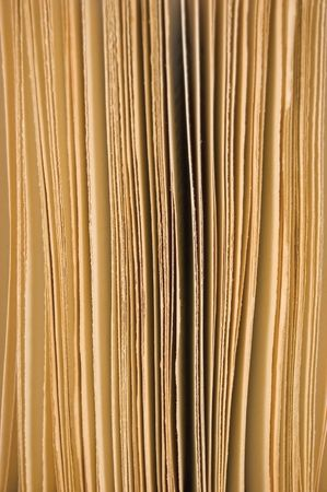 Slightly open book pages closeup background, in sepia photo