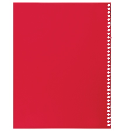 Red note paper, single sheet of blank torn jotter notebook background texture, isolated photo