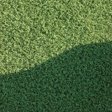 Artificial grass with a shade photo