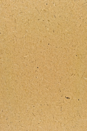 Detailed Yellow Brown Natural Cardboard Texture, Vertical Rustic Textured Background Copy Space photo