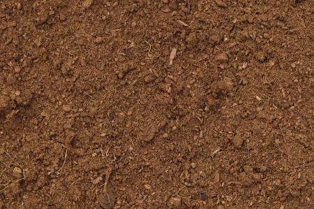 humus: Peat Turf Macro Closeup, large detailed brown organic humus soil background pattern, horizontal Stock Photo