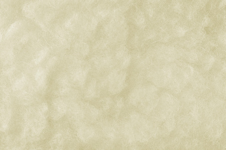 Raw Merino Sheep Wool Macro Closeup, Large Detailed White Textured Pattern Copy Space Background, Horizontal Texture Studio Shot photo
