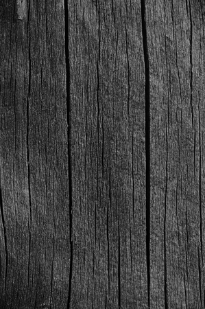 black background abstract: Wooden Plank Board Grey Black Wood Tar Paint Texture Detail, Large Old Aged Dark Gray Detailed Cracked Timber Rustic Macro Closeup Pattern, Blank Empty Vertical Rough Textured Copy Space Grunge Weathered Vintage Woodwork Painted Background