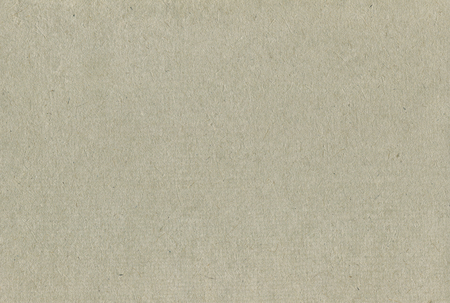 Recycled Paper Texture Pattern Background, Horizontal Pale Grey Beige Tan Taupe Textured Macro Closeup, Rough Gray Natural Handmade Rice Straw Craft Sheet Blank Empty Copy Space Reklamní fotografie - 55683571