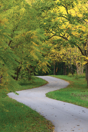 road autumnal: Walnut Trees In Autumnal Park, Large Detailed Vertical Landscaped Autumn Path Scene, Twisting Tarmac Walkway, Winding Asphalt Road Zigzag Perspective, Walnuts Parkland Pavement, Fall Solitude Concept, Green Lawn