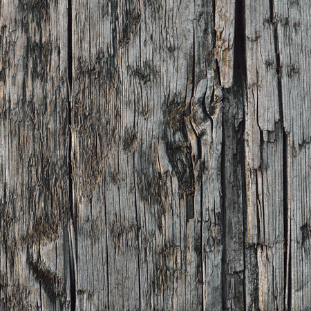 weathered: Natural Weathered Grey Tan Taupe Wooden Board, Cracked Ruined Rough Cut Sepia Wood Texture, Large Detailed Old Aged Gray Lumber Background Horizontal Macro Closeup, Textured Crack Pattern Stock Photo