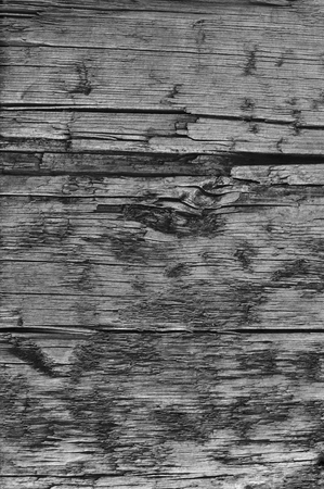 aged wood: Natural Weathered Grey Tan Taupe Wooden Board, Cracked Ruined Rough Cut Sepia Wood Texture, Large Detailed Old Aged Gray Lumber Background Vertical Macro Closeup, Textured Crack Pattern