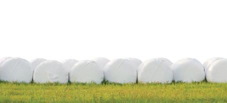 Wrapped stacked silage bales row, isolated round white plastic film hay rolls, haylage stack rows panorama, horizontal grassland closeup, green summer meadow grass, baling concept, panoramic rural scene Banco de Imagens