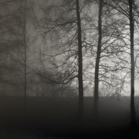 Illuminated Naked Leafless Branches, Backlit Misty Trees Silhouettes, Black Stone Wall, Vertical Bright Background Lit Outdoor Night Scene, Brightly Glowing Searchlight Light, Loneliness Concept Solitude Metaphor, Deserted Outdoors, Foggy Rainy Autumn Midnight Darkness Scenery, Sepia Mist Fog Scene, Gentle Bokeh, Shadows Reklamní fotografie