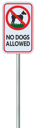 No dogs allowed text warning sign, isolated large detailed ban signage macro closeup, vertical metal regulatory notice board, red frame, metallic pole post