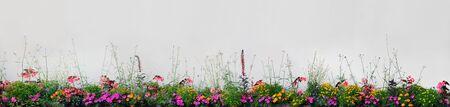 Large Detailed Colorful Horizontal Panoramic Blooming Flower Bed Closeup Pattern, Magenta, Purple, Red, Pink, Orange, Yellow Annual Flowers Flowerbed Panorama, Flowering Herbaceous Ornamental Garden Plot Banner, Bright Beige Wall Background, Gentle Bokeh