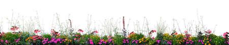 Flowerbed Flower Blooming Annual Flowers Bed Isolated Panorama Closeup Horizontal Panoramic Cardinal, Begonias, Balsams, Gauras, Marigolds, Verbenas, Wandflowers, Red, Pink, White,Yellow Garden Banner