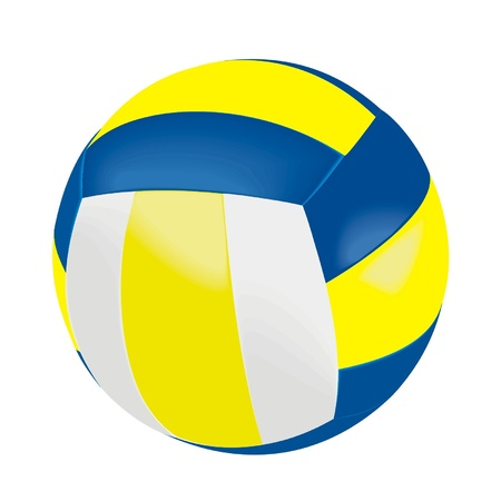 volleball ball Vector