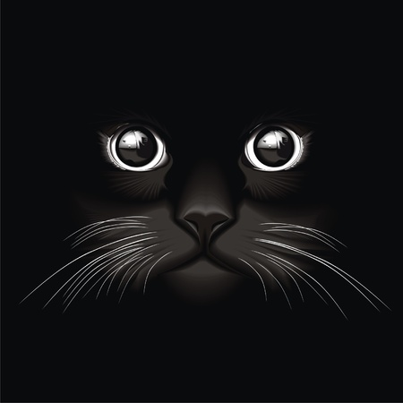 green and black: eyes_cat