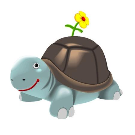aqueous: tartaruga Vettoriali