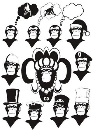 hairy male: monkey