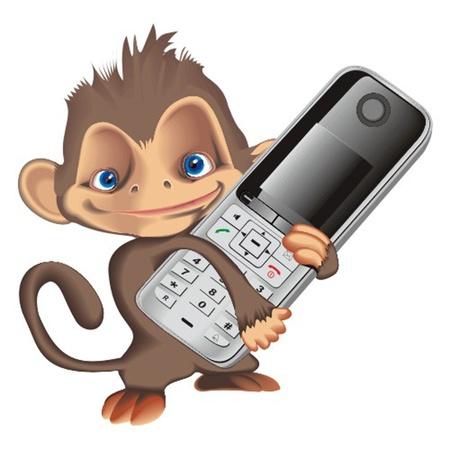 monkey Stock Vector - 13324869