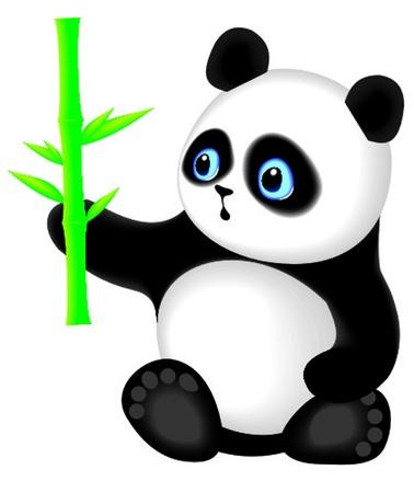giant panda: panda