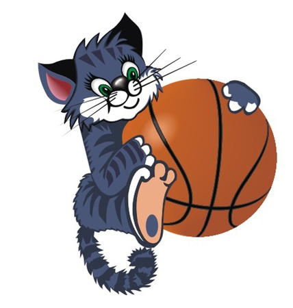 ridiculous: cat_with_basketball_ball