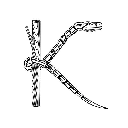 Letter snake K Stock Vector - 19876787