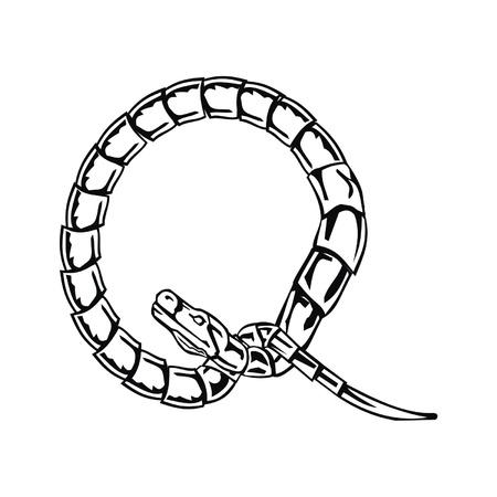 Letter snake Q Stock Vector - 19876780
